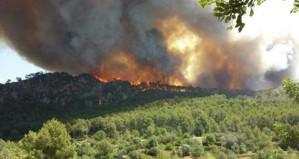 el 26 de Julio a las 13 hrs. se inicón el incendio en Andratx