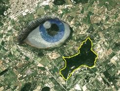 El chakra 6 está asociado a la visión en el plano etérico y a la glándula pineal. Aparece un ojo y una cabeza abierta por detrás.