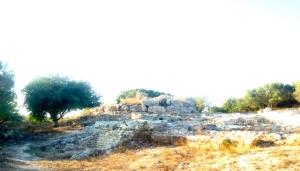 Selec Talayots Mallorca - 17