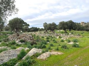 Selec Talayots Mallorca - 32