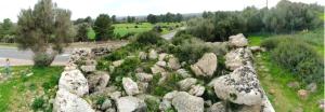 Selec Talayots Mallorca - 48