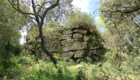 Selec Talayots Mallorca - 50