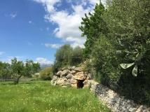 Selec Talayots Mallorca - 51