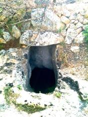 Selec Talayots Mallorca - 7